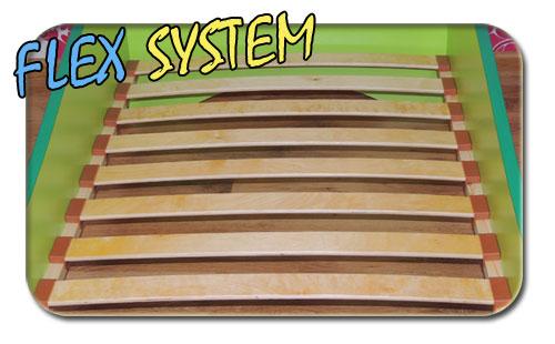 System-flex2